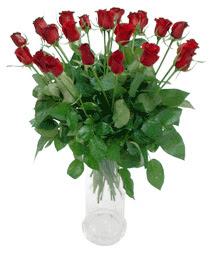 Sakarya 14 şubat sevgililer günü çiçek  11 adet kimizi gülün ihtisami cam yada mika vazo modeli