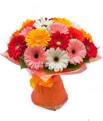 Renkli gerbera buketi  Sakarya çiçek satışı