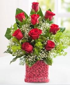 Cam içerisinde 9 adet kırmızı gül  Sakarya güvenli kaliteli hızlı çiçek