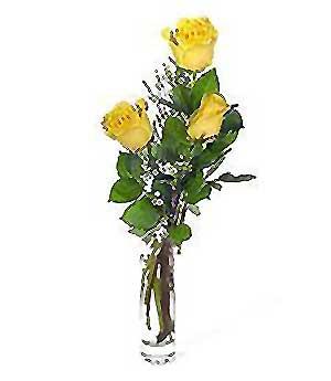 Sakarya online çiçekçi , çiçek siparişi  3 adet kalite cam yada mika vazo gül