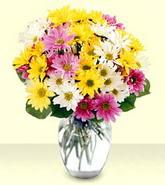 Sakarya online çiçekçi , çiçek siparişi  mevsim çiçekleri mika yada cam vazo