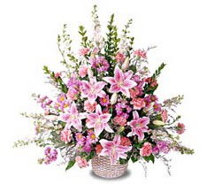 Sakarya kaliteli taze ve ucuz çiçekler  Tanzim mevsim çiçeklerinden çiçek modeli