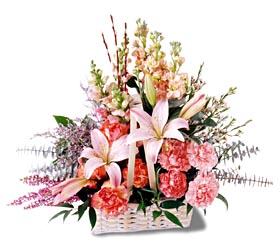Sakarya kaliteli taze ve ucuz çiçekler  mevsim çiçekleri sepeti özel tanzim