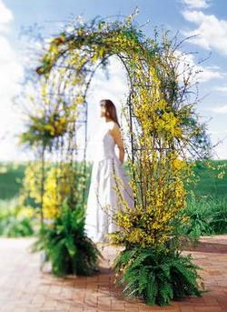 Sakarya güvenli kaliteli hızlı çiçek  güller ve mevsim çiçegi