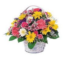 Sakarya hediye sevgilime hediye çiçek  mevsim çiçekleri sepeti özel