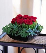 Sakarya kaliteli taze ve ucuz çiçekler  10 adet kare mika yada cam vazoda gül tanzim