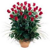 Sakarya çiçek gönderme  10 adet kirmizi gül cam yada mika vazo