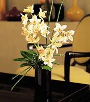 Sakarya yurtiçi ve yurtdışı çiçek siparişi  cam yada mika vazo içerisinde dal orkide