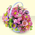 Sakarya çiçekçiler  bir sepet dolusu kir çiçegi  Sakarya cicek , cicekci