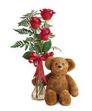 oyuncak ve güller tanzim   Sakarya 14 şubat sevgililer günü çiçek
