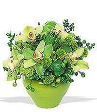 cam yada mika vazoda 5 adet orkide   Sakarya internetten çiçek siparişi