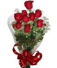 9 adet kaliteli kirmizi gül   Sakarya internetten çiçek siparişi