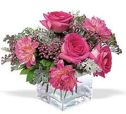 Sakarya çiçek yolla  cam içerisinde 5 gül 7 gerbera çiçegi