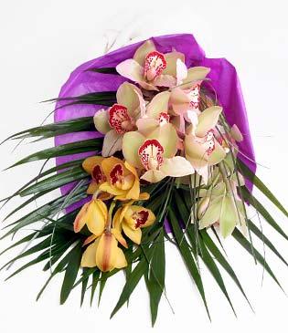 Sakarya çiçek yolla  1 adet dal orkide buket halinde sunulmakta