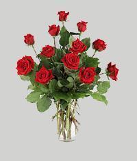 Sakarya çiçek yolla  11 adet kirmizi gül vazo halinde