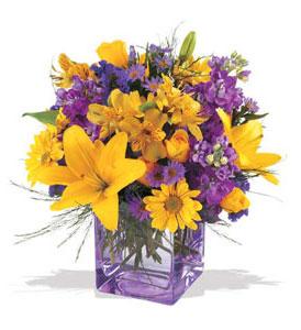Sakarya çiçekçi mağazası  cam içerisinde kir çiçekleri demeti