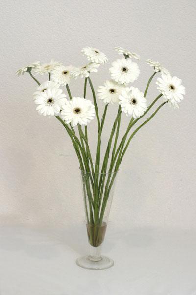 Sakarya çiçekçi mağazası  cam vazo içerisinde 17 adet sade gerbera