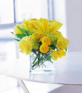 Sakarya çiçek online çiçek siparişi  sarinin sihri cam içinde görsel sade çiçekler