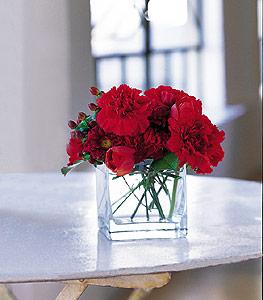 Sakarya çiçek online çiçek siparişi  kirmizinin sihri cam içinde görsel sade çiçekler