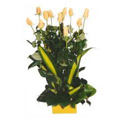 12 adet beyaz gül aranjmani  Sakarya çiçek siparişi sitesi