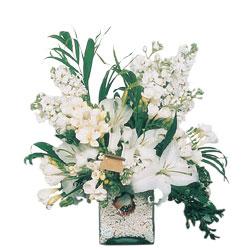 Sakarya online çiçekçi , çiçek siparişi  sadece beyazlardan olusmus mevsim cam yada mika tanzim
