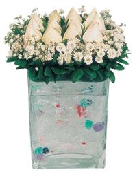 Sakarya çiçek mağazası , çiçekçi adresleri  7 adet beyaz gül cam yada mika vazo tanzim