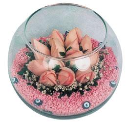 Sakarya güvenli kaliteli hızlı çiçek  cam fanus içerisinde 10 adet gül