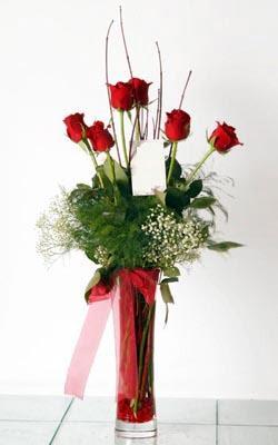 Sakarya çiçek yolla  6 adet kirmizi gül ve cam yada mika vazo