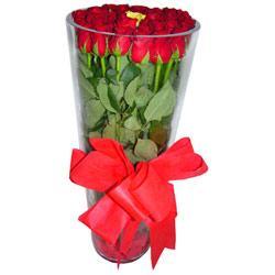 Sakarya ucuz çiçek gönder  12 adet kirmizi gül cam yada mika vazo tanzim