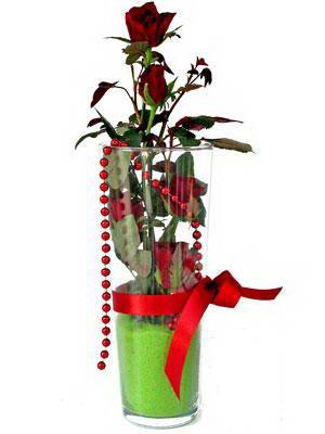 Sakarya İnternetten çiçek siparişi  Cam yada mika içerisinde 9 adet kirmizi gül - sevdiklerinize özel