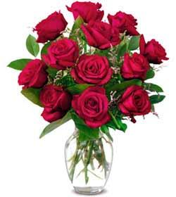 Sakarya İnternetten çiçek siparişi  1 düzine kirmizi gül sevenlere özel vazo gülleri