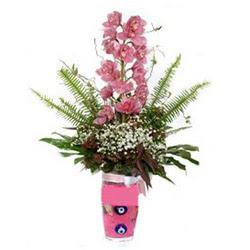 Sakarya çiçek servisi , çiçekçi adresleri  cam yada mika vazo içerisinde tek dal orkide çiçegi