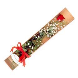 Sakarya hediye sevgilime hediye çiçek  Kutuda tek 1 adet kirmizi gül çiçegi
