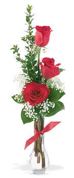 Sakarya çiçek yolla  mika yada cam vazoda 3 adet kirmizi gül