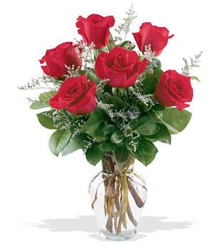 Sakarya çiçek yolla  cam yada mika vazoda 6 adet kirmizi gül
