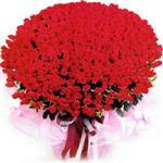 Sakarya internetten çiçek siparişi  1001 adet kirmizi gülden çiçek tanzimi