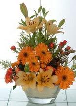 Sakarya hediye çiçek yolla  cam yada mika vazo içinde karisik mevsim çiçekleri