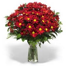 Sakarya cicekciler , cicek siparisi  Kir çiçekleri cam yada mika vazo içinde