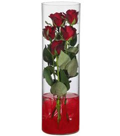 cam içerisinde 7 adet kirmizi gül  Sakarya yurtiçi ve yurtdışı çiçek siparişi