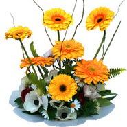camda gerbera ve mis kokulu kir çiçekleri  Sakarya 14 şubat sevgililer günü çiçek