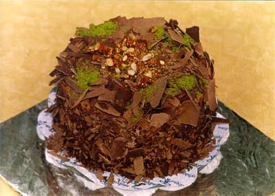 Çikolatali 4 ila 6 kisilik yas pasta  Sakarya cicek , cicekci