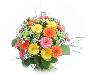 13 adet gerbera çiçegi buketi  Sakarya İnternetten çiçek siparişi