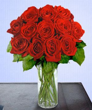 Anneme 12 adet cam içerisinde kirmizi gül  Sakarya kaliteli taze ve ucuz çiçekler