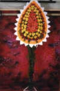 Sakarya anneler günü çiçek yolla  dügün açilis çiçekleri  Sakarya hediye sevgilime hediye çiçek