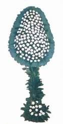 Sakarya İnternetten çiçek siparişi  dügün açilis çiçekleri  Sakarya internetten çiçek satışı