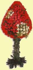 Sakarya uluslararası çiçek gönderme  dügün açilis çiçekleri  Sakarya ucuz çiçek gönder