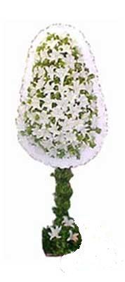 Sakarya kaliteli taze ve ucuz çiçekler  nikah , dügün , açilis çiçek modeli  Sakarya İnternetten çiçek siparişi