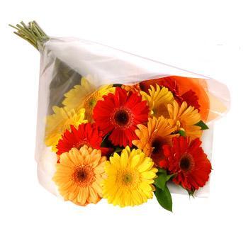Karisik renklerde gerbera buketi  Sakarya çiçek yolla