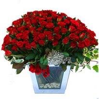 Sakarya yurtiçi ve yurtdışı çiçek siparişi   101 adet kirmizi gül aranjmani