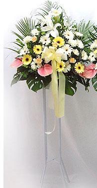 Sakarya İnternetten çiçek siparişi   perförje çiçegi dügün çiçekleri